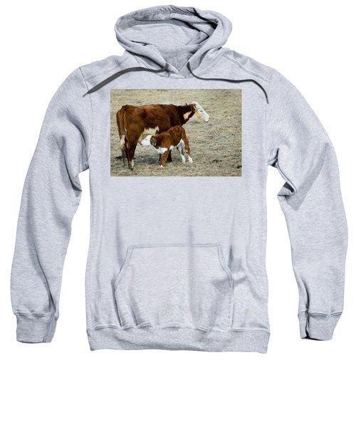 Nursing Calf Sweatshirt