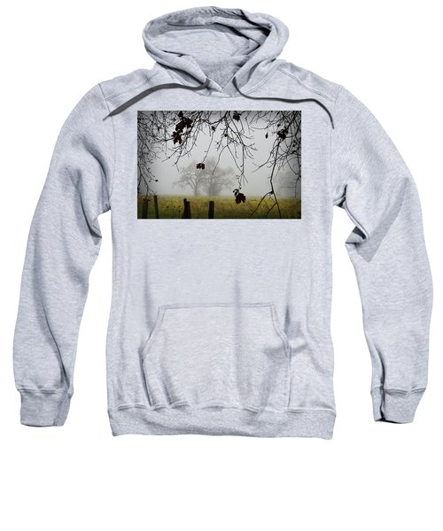 Oak Dreams Sweatshirt
