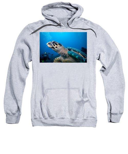 Oh That Paparazzi  Sweatshirt