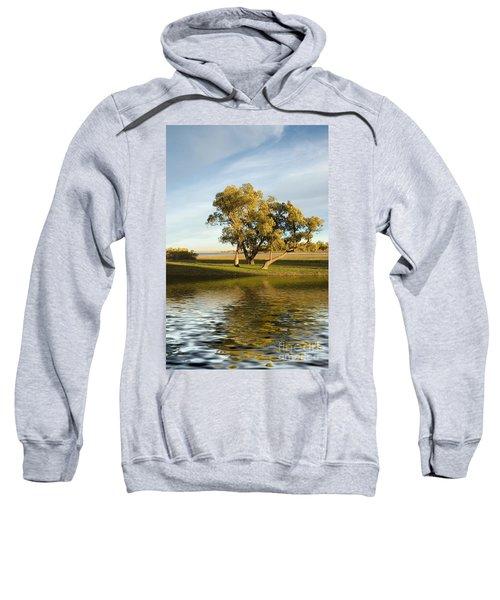 Oliver Solitude Sweatshirt