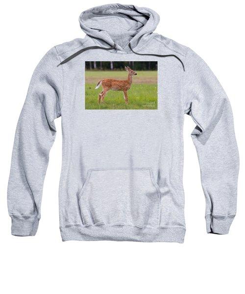 On Alert Sweatshirt