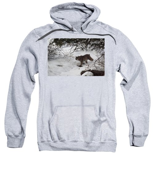 On The Prowl Sweatshirt
