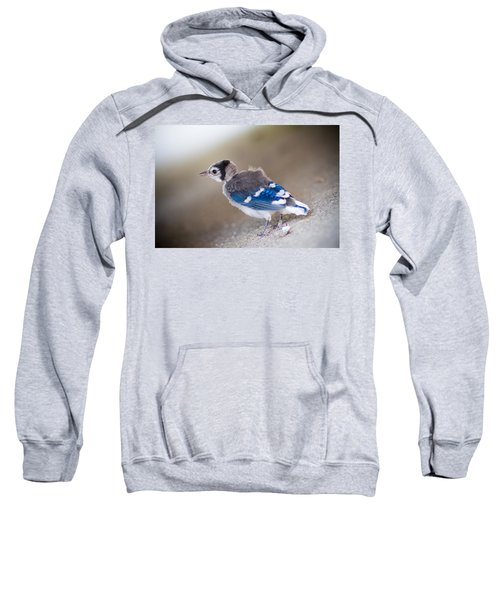 one day...I will fly Sweatshirt