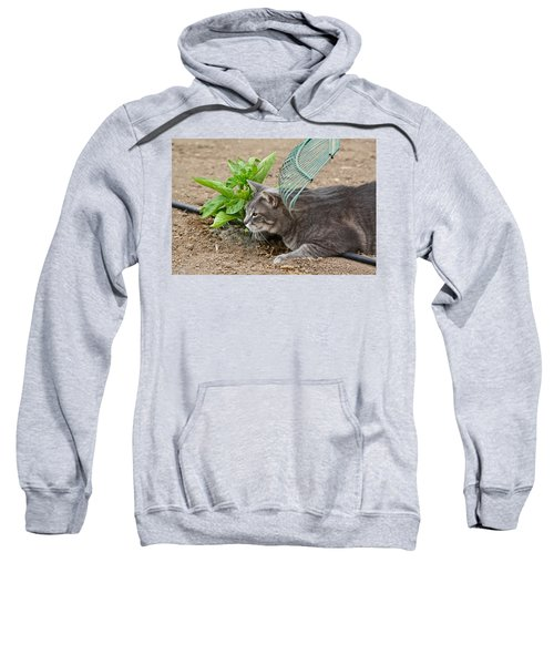 One Happy Cat Sweatshirt