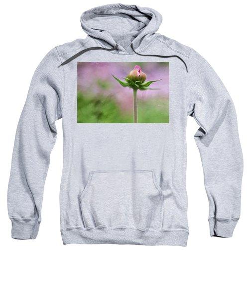 Only One Sweatshirt