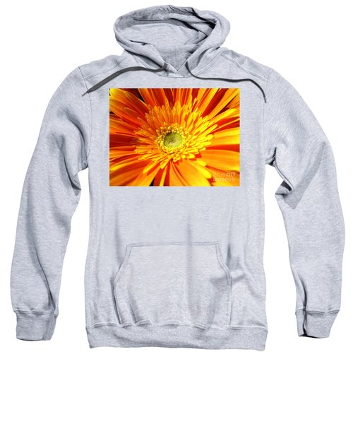 Orange Gerbera Sweatshirt