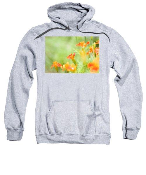 Orange Meadow Sweatshirt