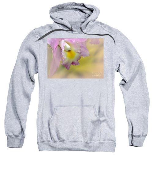 Orchid Whisper Sweatshirt