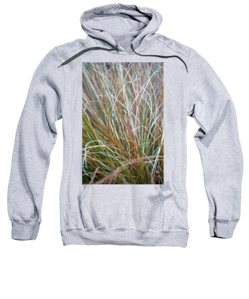 Ornamental Grass Abstract Sweatshirt