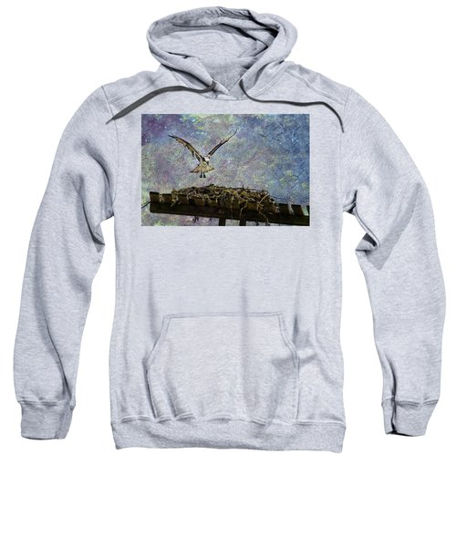 Osprey-coming Home Sweatshirt