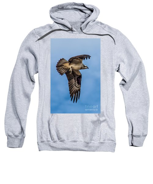 Osprey Flying Away Sweatshirt