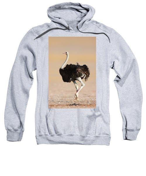 Ostrich Sweatshirt