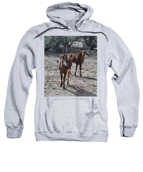 Out Of Africa B Sweatshirt