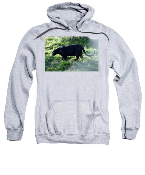 Out Of Africa  Black Panther Sweatshirt