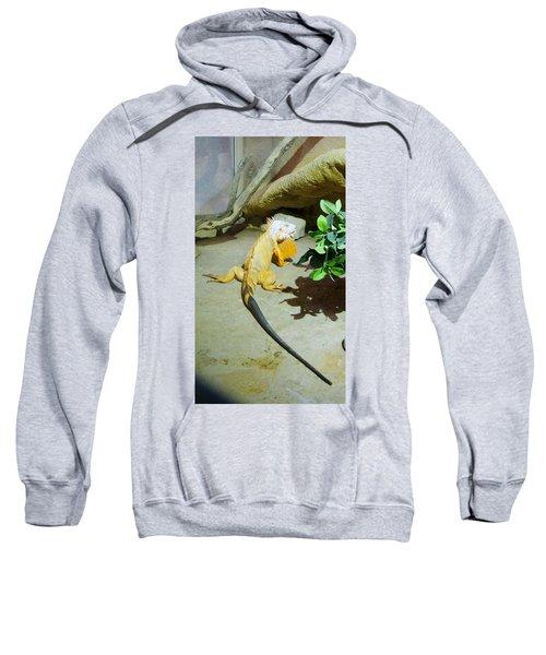 Out Of Africa Orange Lizard 2  Sweatshirt