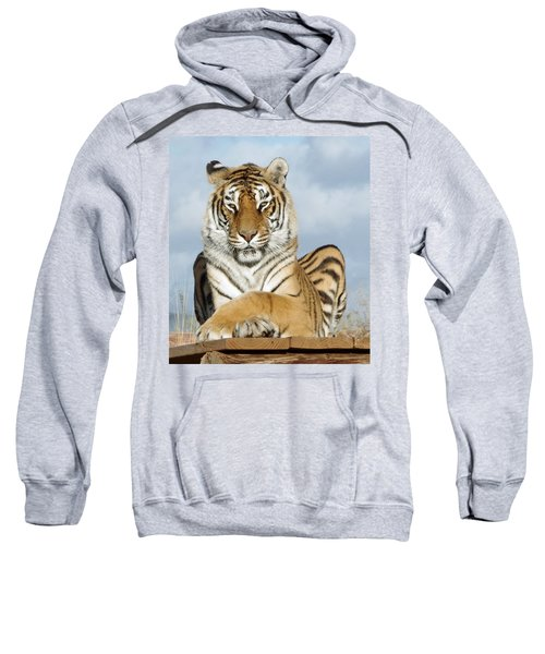 Out Of Africa Tiger 3 Sweatshirt