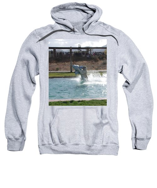 Out Of Africa Tiger Spalsh 8 Sweatshirt