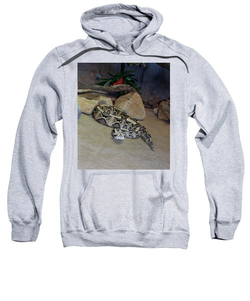 Out Of Africa Viper 2 Sweatshirt