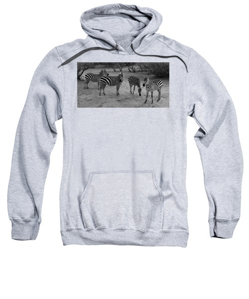Out Of Africa  Zebras Sweatshirt