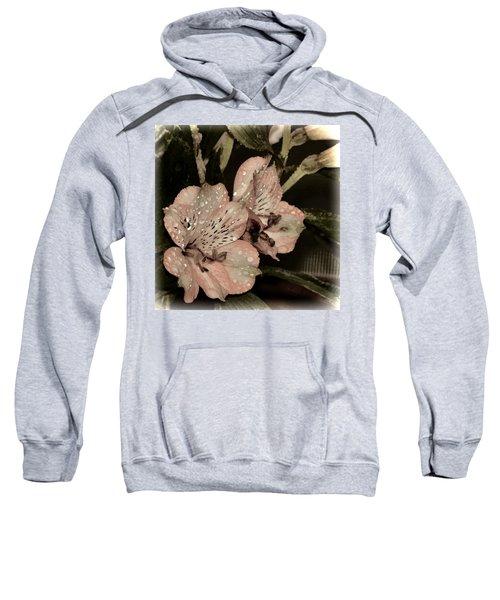 Pale Pink Lilies On Dark Background Sweatshirt