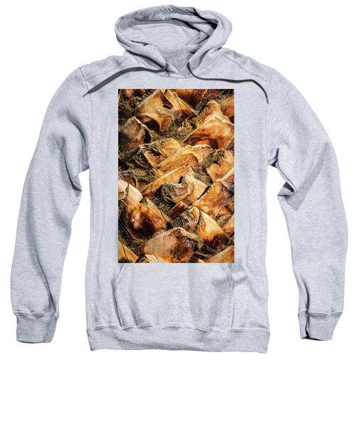 Palm Bark Sweatshirt