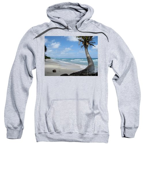 Palm Tree On The Beach Sweatshirt