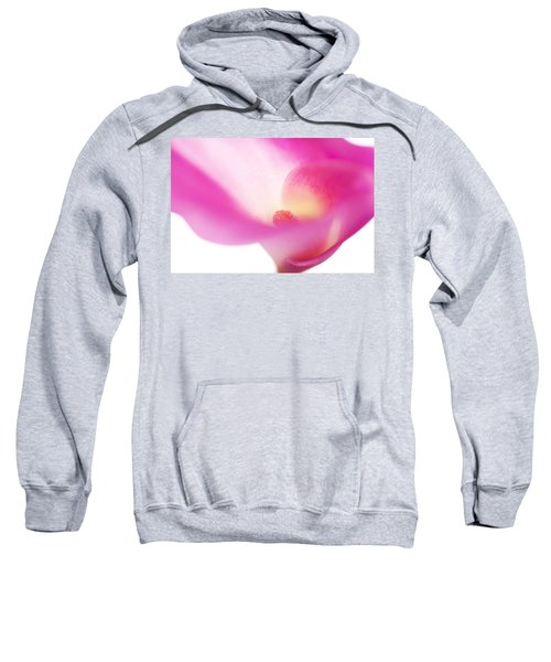 Passion For Flowers. Pink Veil Sweatshirt