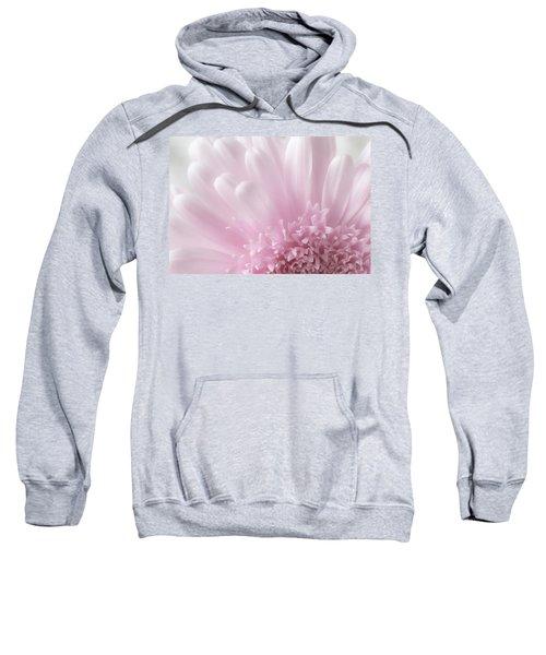 Pastel Daisy Sweatshirt