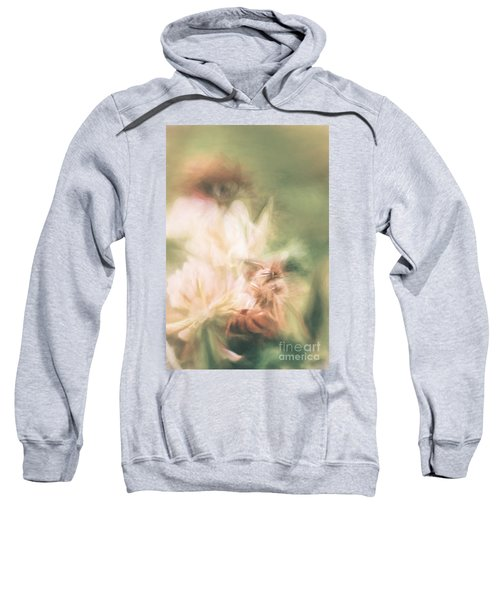 Pastel Painting Of A Honeybee Insect  Sweatshirt