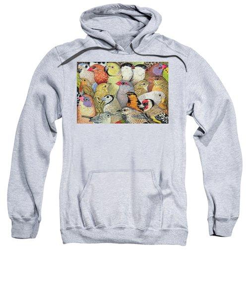Patchwork Birds Sweatshirt
