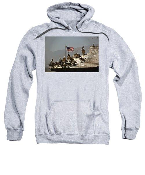 Patriotic Pelicans  Sweatshirt