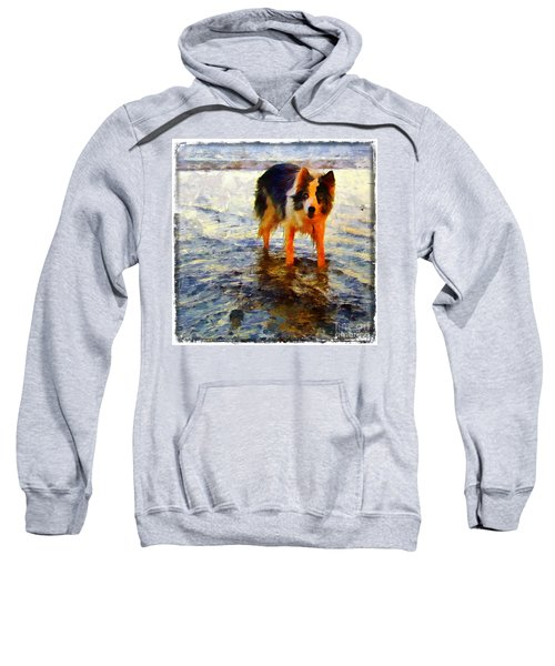 Paws For Thought Sweatshirt