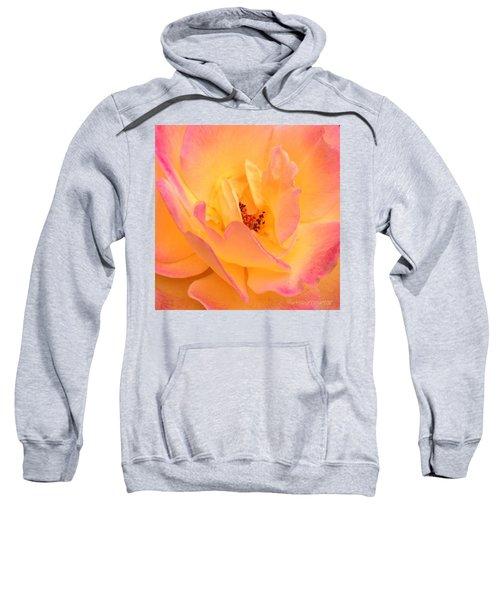 Peach Parfait  Sweatshirt