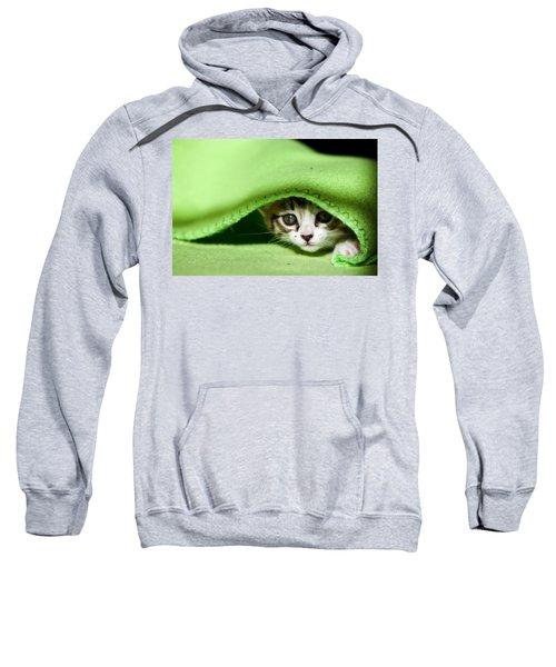 Peeking Sweatshirt