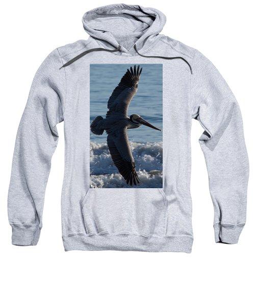 Pelican Flight Sweatshirt