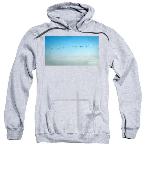 Pelican Flight Line Sweatshirt by Peggy Hughes