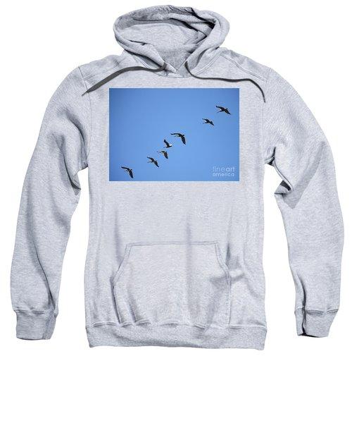 Pelicans All In A Row Sweatshirt