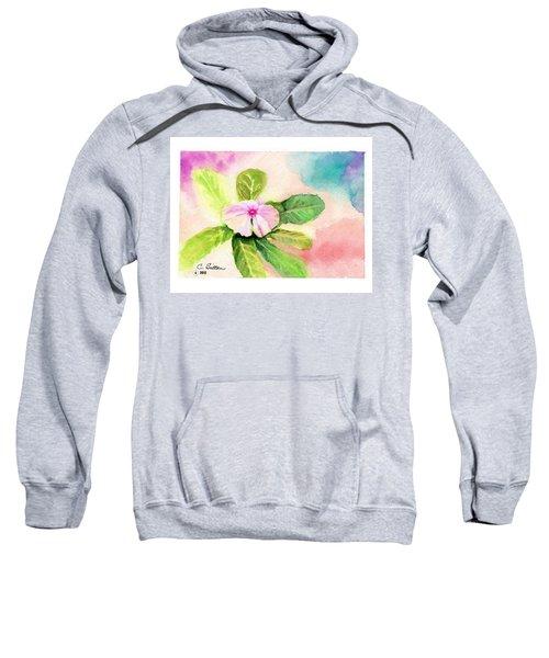 Periwinkle Sweatshirt