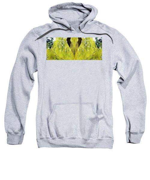 Photo Synthesis 5 Sweatshirt