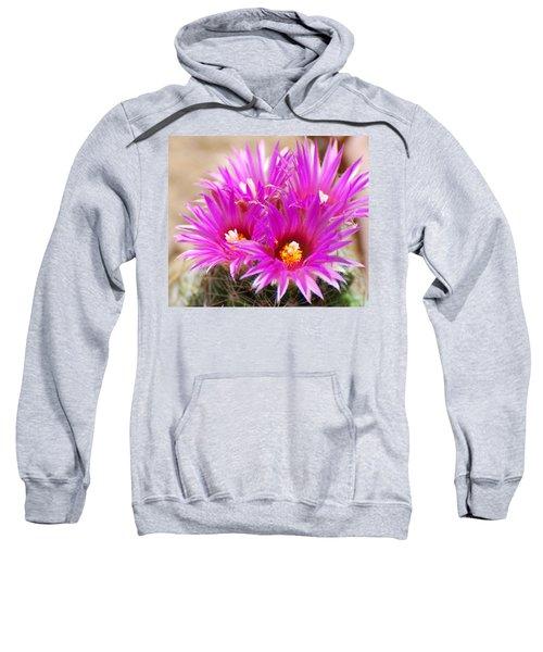 Pincushion Sweatshirt