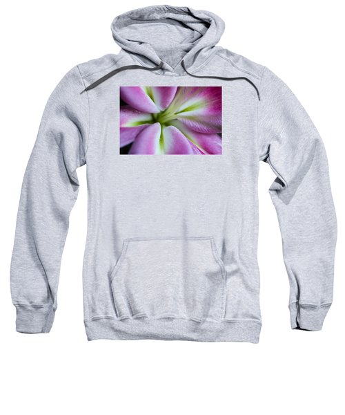 Pink Asiatic Lily Sweatshirt