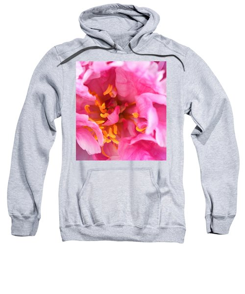 Pink Beauty Sweatshirt