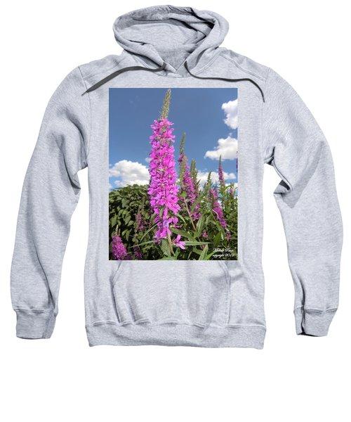 Pink Brilliance Sweatshirt