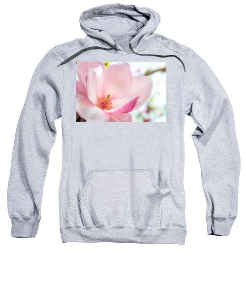 Pink Magnolia Sweatshirt