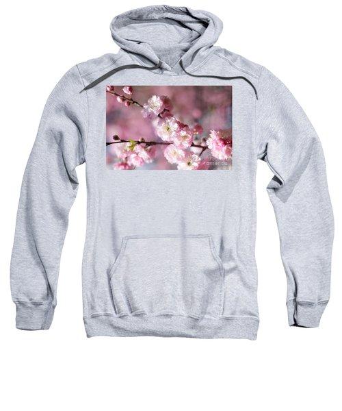 Pink Plum Branch 1 Sweatshirt