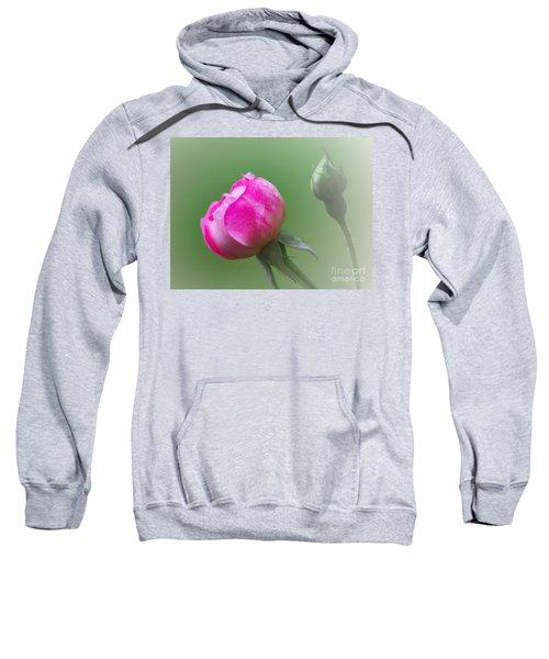 Pink Rose And Raindrops Sweatshirt