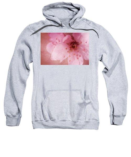 Pink Spring Blossom Sweatshirt
