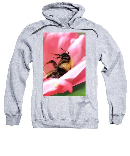 'pollen High' Sweatshirt