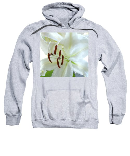Pollinated White Tiger Lily Sweatshirt