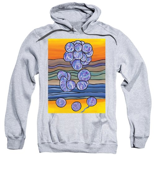 Pondering Creation - Unravelling The Micro Organisms Sweatshirt